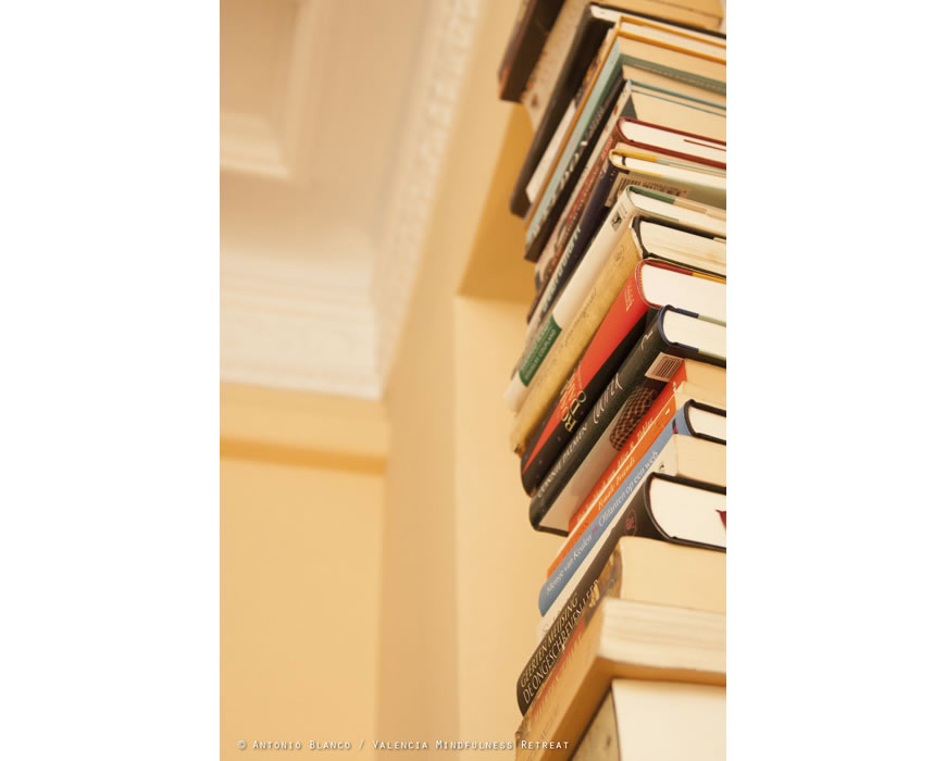 Books on all things Valencia, literature and bestsellers and your vacation-home.