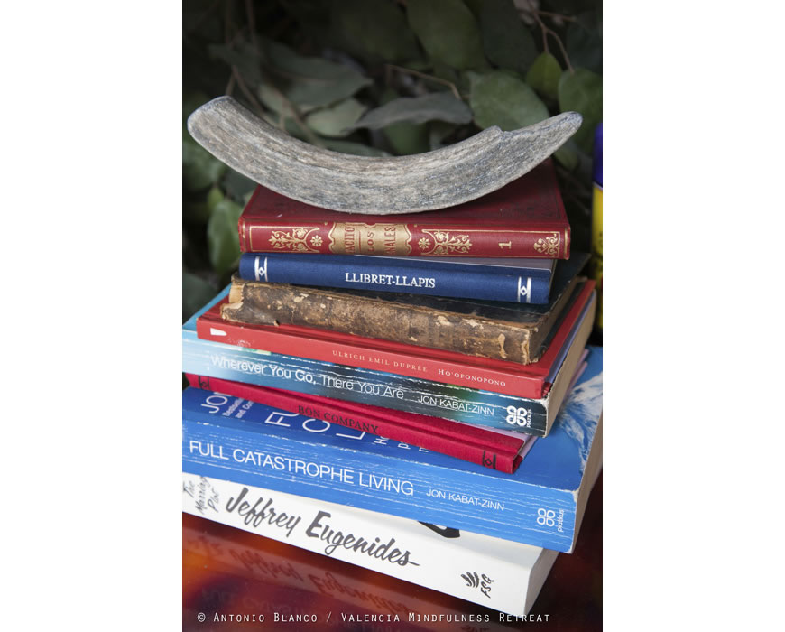 As our retreat is all about you we offer lots of Mindfulness books.