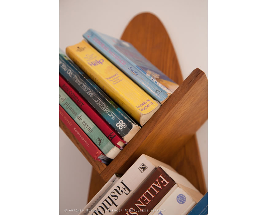 Your bed and breakfast library offers great books on all things Valencia.